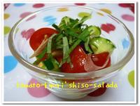 Shisosalada1