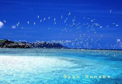 Syou_sunabe1